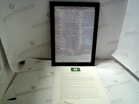 Lot 14 CHAMPIONS LEAGUE FINAL 2005 COMMENTARY CHART