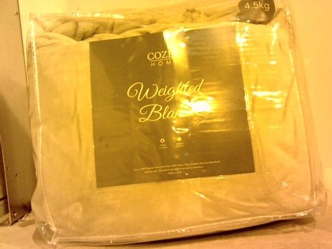 Lot 16206 COZEE HOME WEIGHTED BLANKET WITH REMOVABLE PLUSH COVER