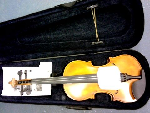 Lot 848 AILEEN VIOLIN 4/4 FULL SIZE FOR BEGINNERS