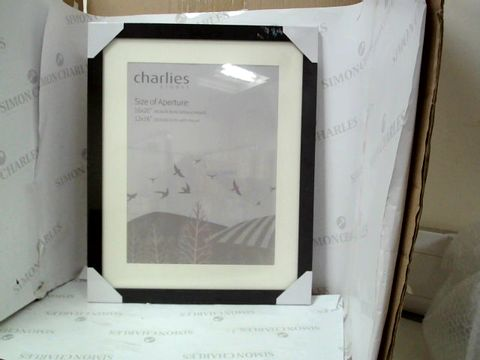 Lot 10024 CHARLIES STORES BLACK FRAME