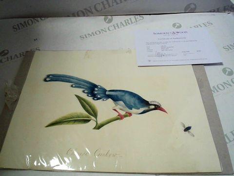 Lot 7 EARLY 19TH CENTURY WATERCOLOUR CHINESE CUCKOW BIRD